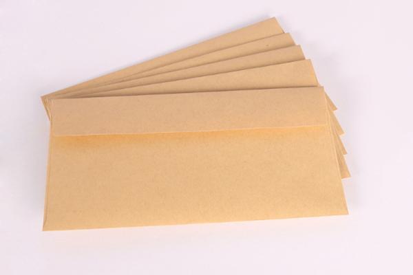 牛皮纸5号信封 (3)